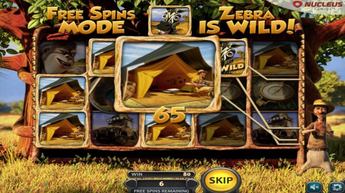 No Deposit Casino Guide - Multiple winning paylines triggered during the free spins bonus feature