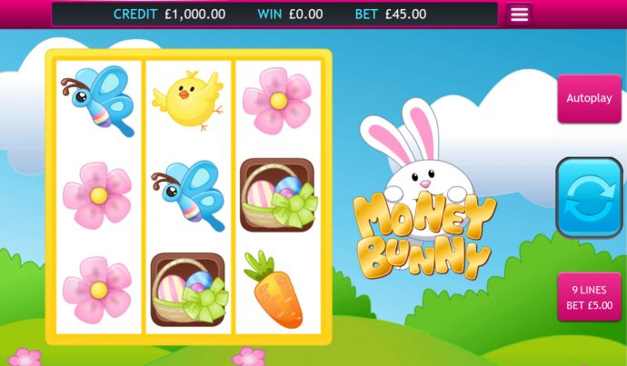 Images of Money Bunny