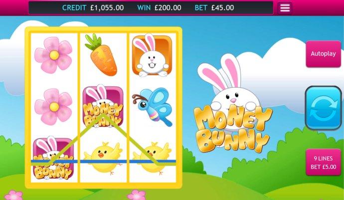 Money Bunny screenshot