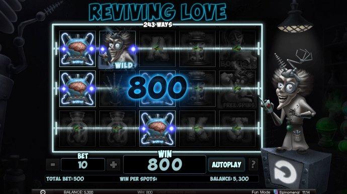 No Deposit Casino Guide - 800 Coin Win