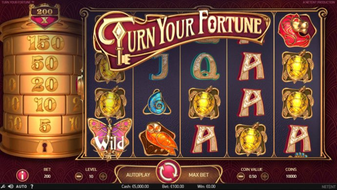 Turn Your Fortune screenshot