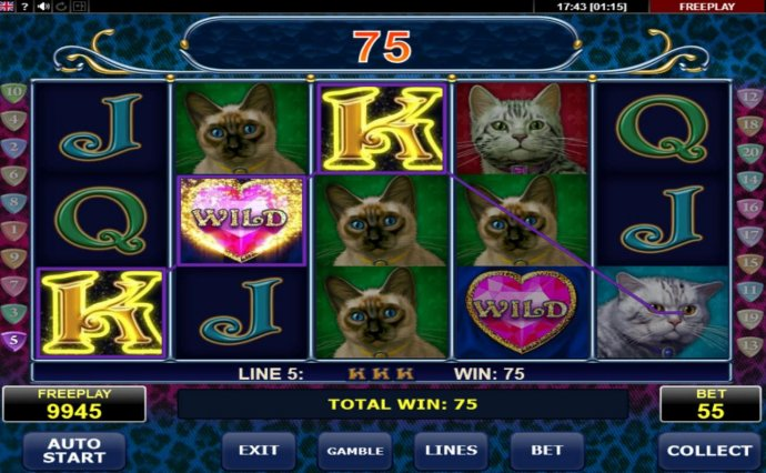 Images of Diamond Cats
