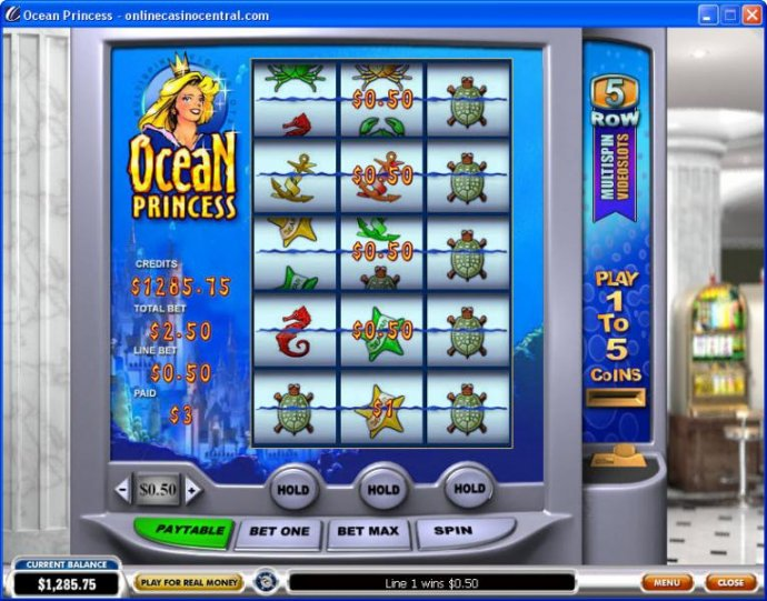 Ocean Princess screenshot
