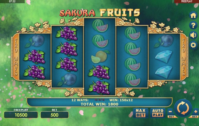 Images of Sakura Fruits
